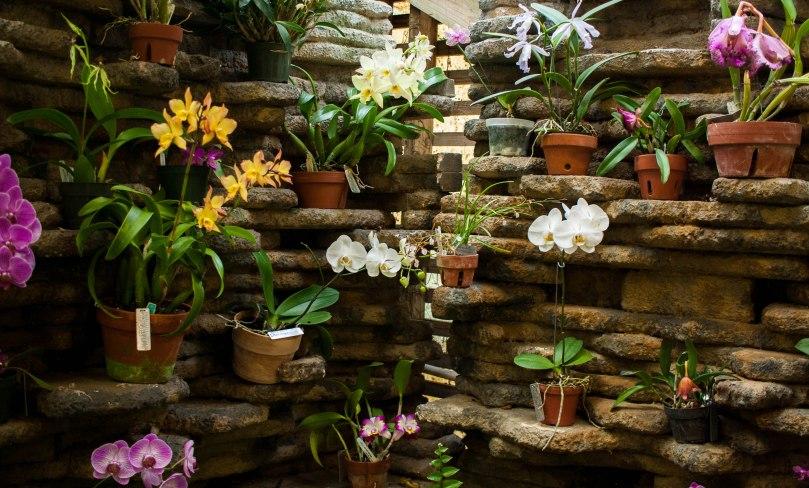 Botanical Gardens-27