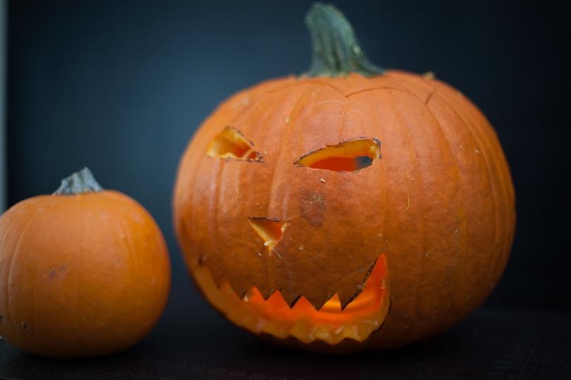 pumpkins2016-17